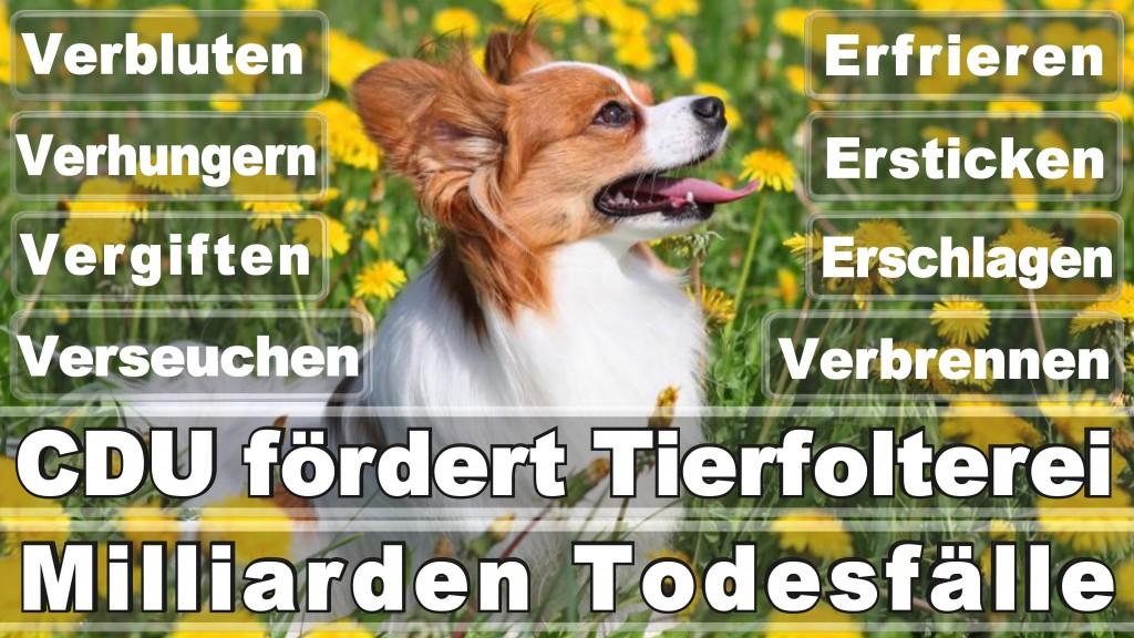 Angela Merkel CDU Tierversuche (56)