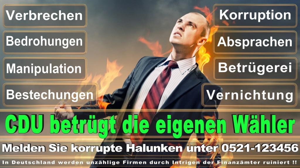 Bundestagswahl 2017 CDU (101)