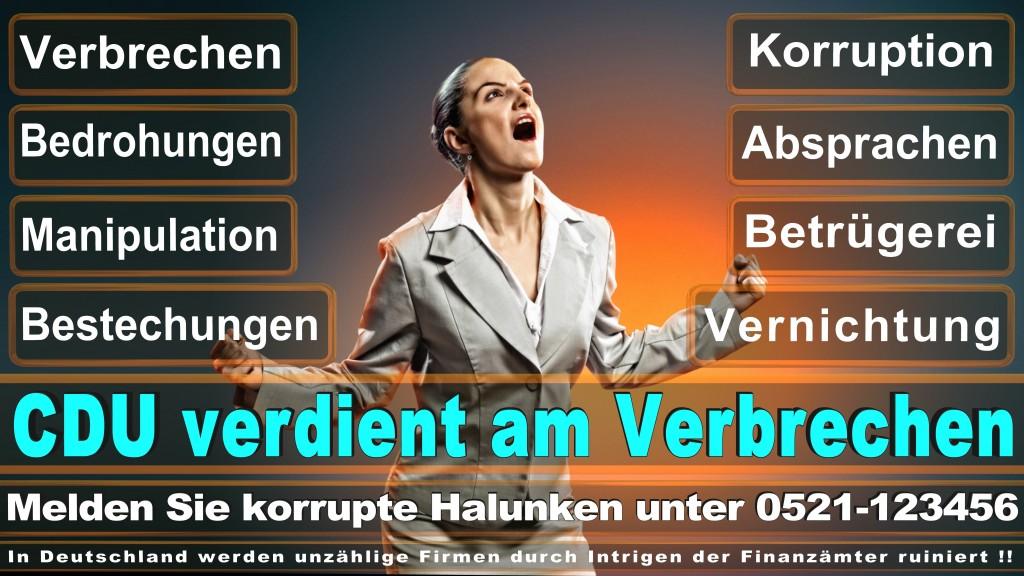 Bundestagswahl 2017 CDU (83)