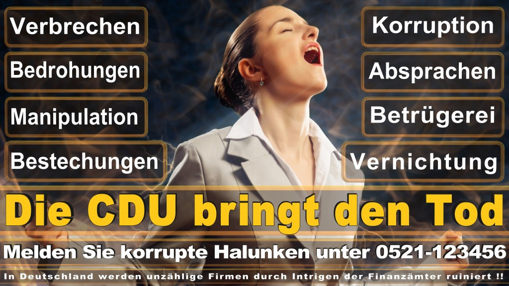 Bundestagswahl 2017 CDU (84)
