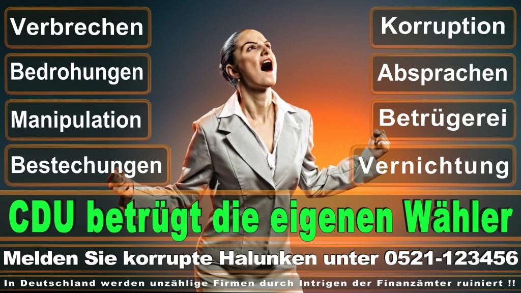 Bundestagswahl 2017 CDU (90)