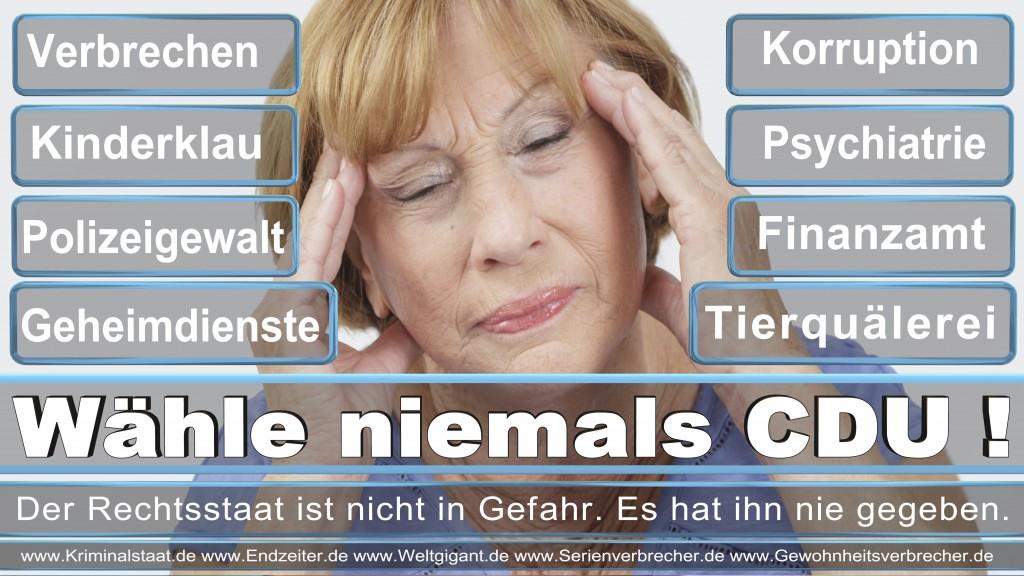 Bundestagswahl 2017 CDU SPD FDP AfD NPD Piratenpartei Wahlplakat Wahlplakate (10)