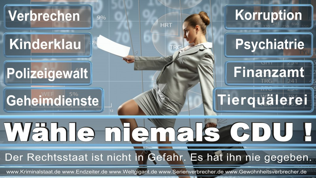 Bundestagswahl 2017 CDU SPD FDP AfD NPD Piratenpartei Wahlplakat Wahlplakate (12)