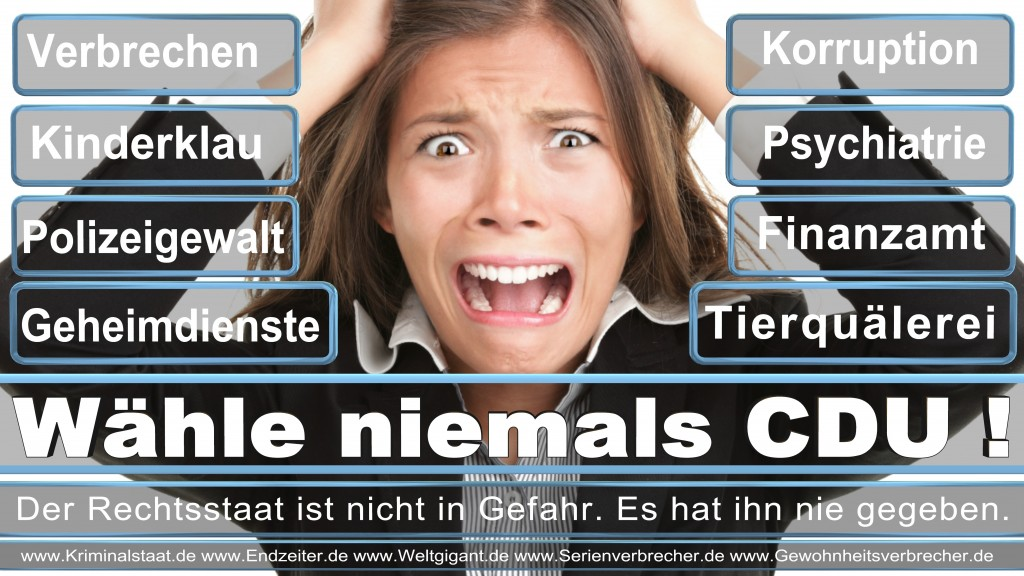 Bundestagswahl 2017 CDU SPD FDP AfD NPD Piratenpartei Wahlplakat Wahlplakate (3)