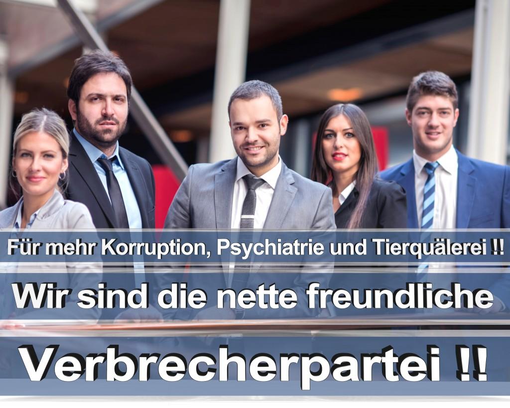 Bundestagswahl 2017 Wahlplakate CDU SPD Angela Merkel Frauke Petry AfD RTL ZDF ARD ARTE (1)