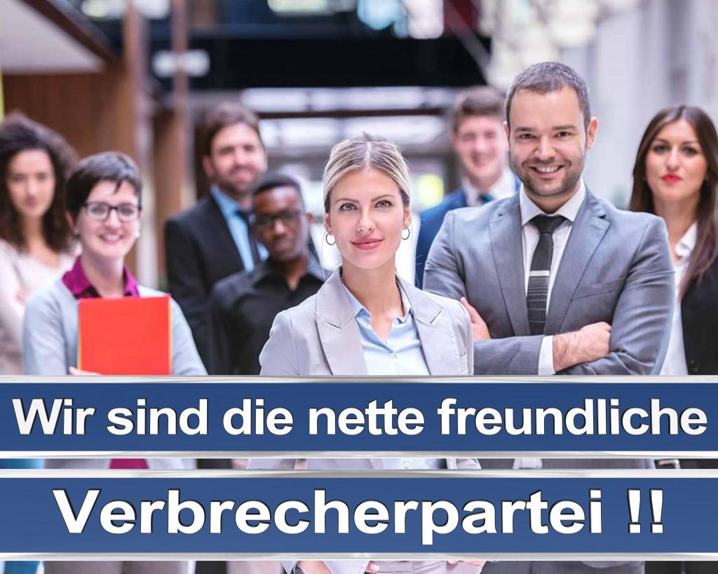 Bundestagswahl 2017 Wahlplakate CDU SPD Angela Merkel Frauke Petry AfD RTL ZDF ARD ARTE (12)