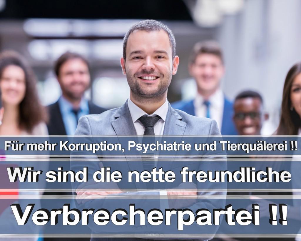 Bundestagswahl 2017 Wahlplakate CDU SPD Angela Merkel Frauke Petry AfD RTL ZDF ARD ARTE (15)