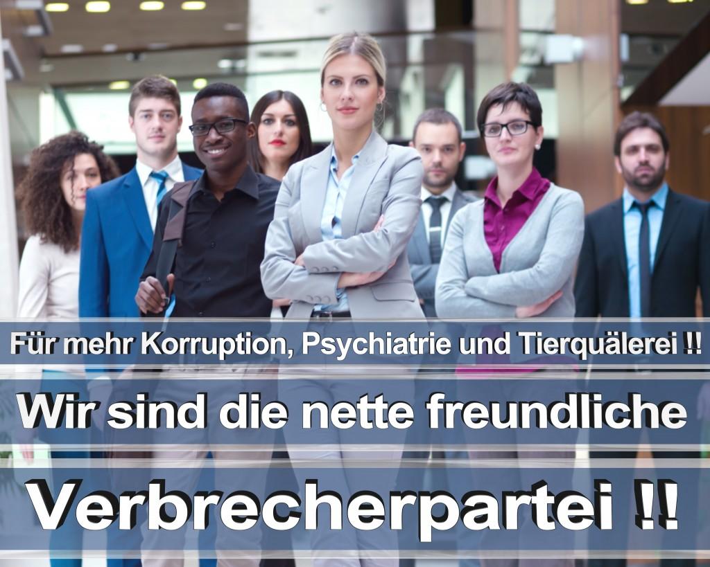 Bundestagswahl 2017 Wahlplakate CDU SPD Angela Merkel Frauke Petry AfD RTL ZDF ARD ARTE (2)