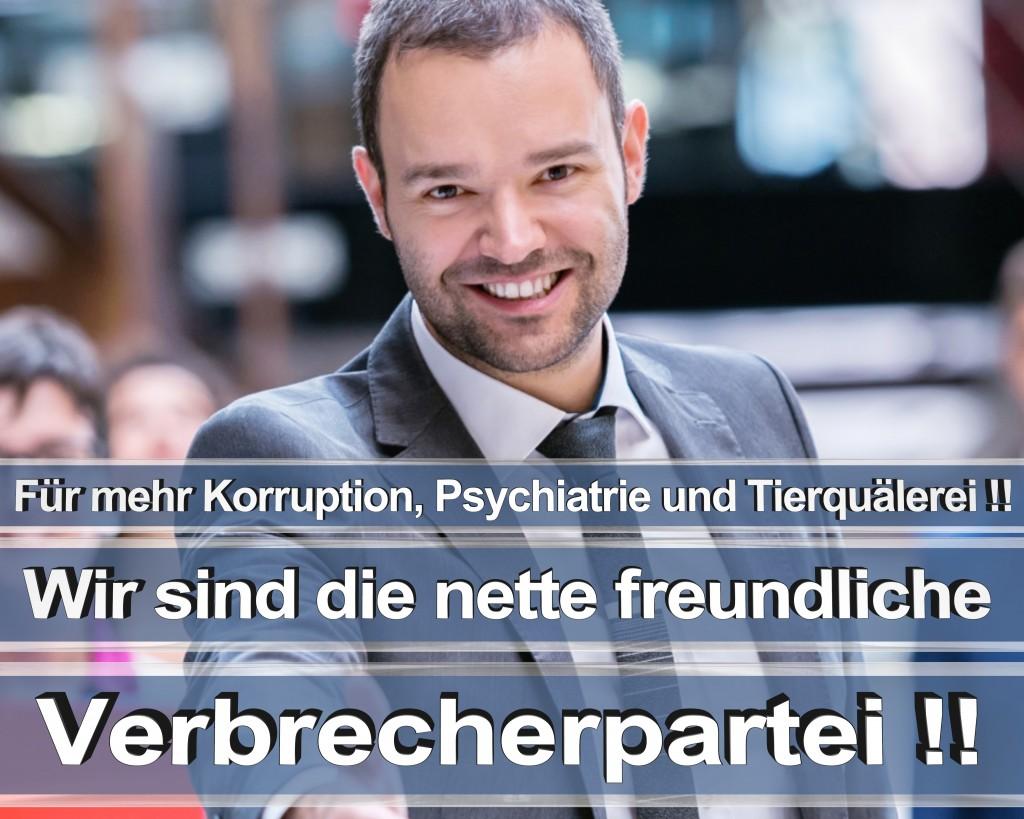 Bundestagswahl 2017 Wahlplakate CDU SPD Angela Merkel Frauke Petry AfD RTL ZDF ARD ARTE (4)