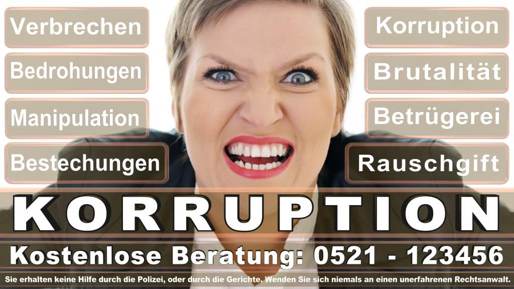 Bundesverfassungsgericht-Karlsruhe (102)