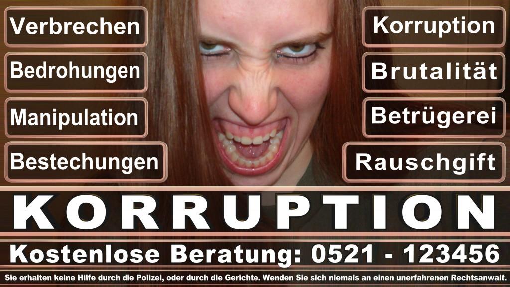 Bundesverfassungsgericht-Karlsruhe (11)