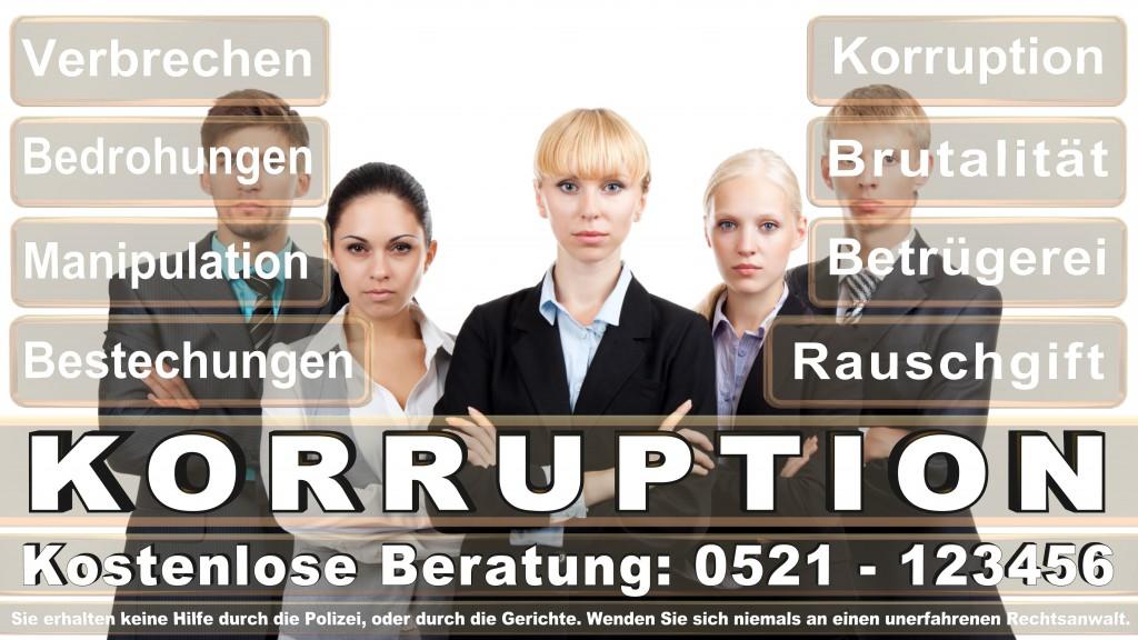 Bundesverfassungsgericht-Karlsruhe (121)