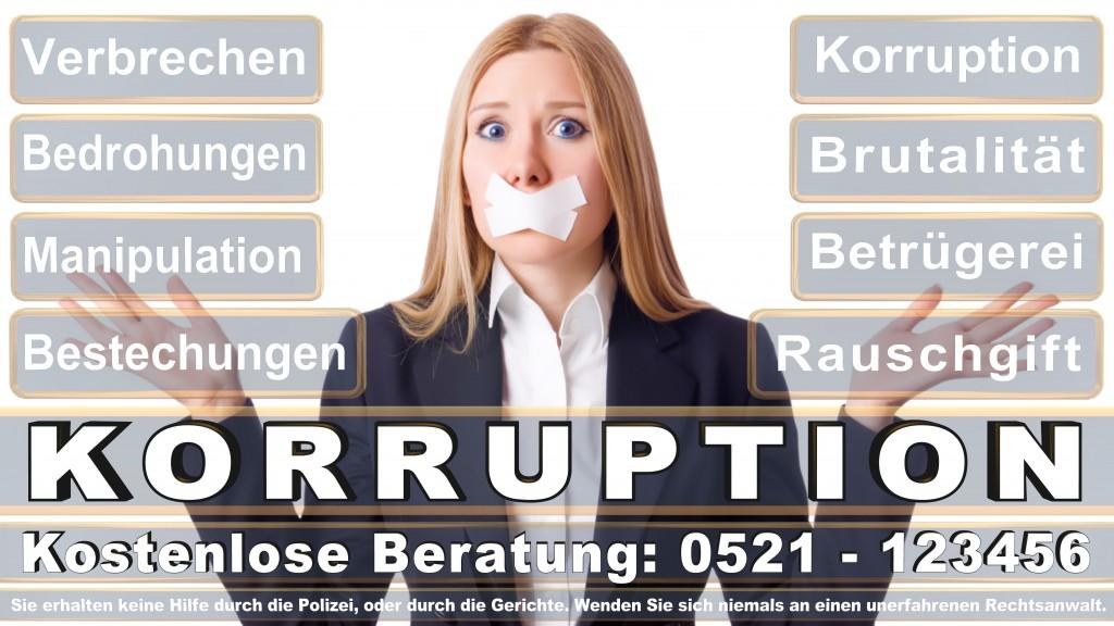 Bundesverfassungsgericht-Karlsruhe (125)