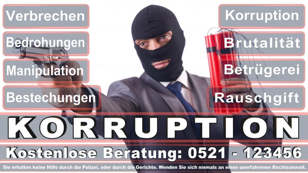 Bundesverfassungsgericht-Karlsruhe (128)