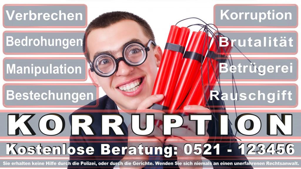 Bundesverfassungsgericht-Karlsruhe (130)