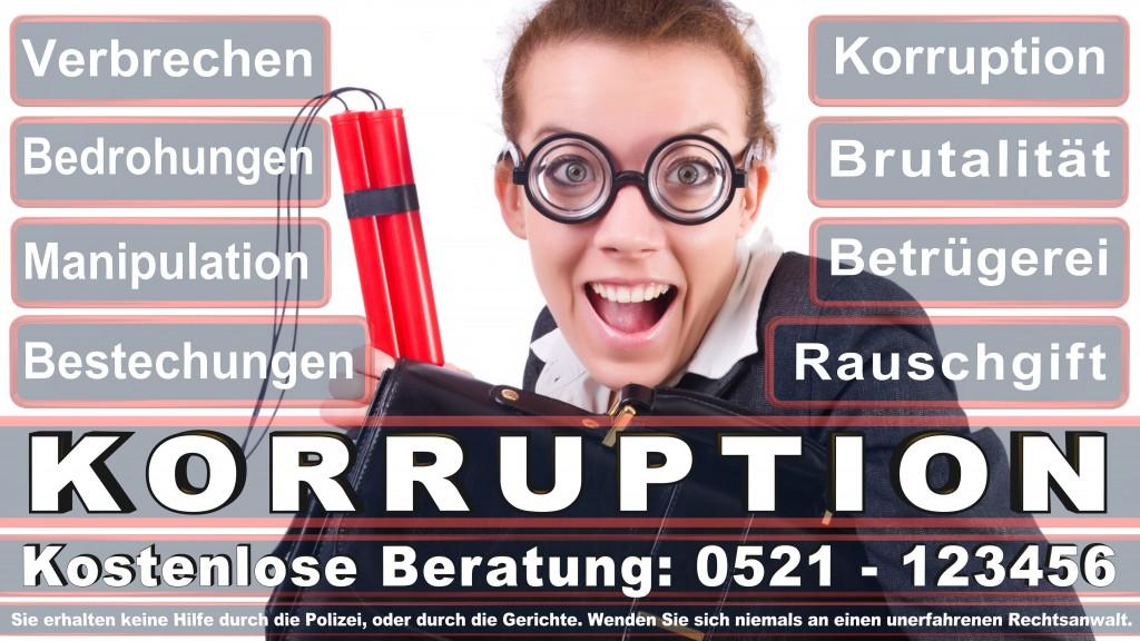 Bundesverfassungsgericht-Karlsruhe (131)