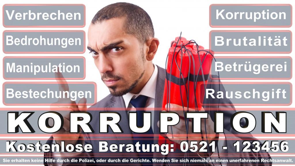 Bundesverfassungsgericht-Karlsruhe (132)