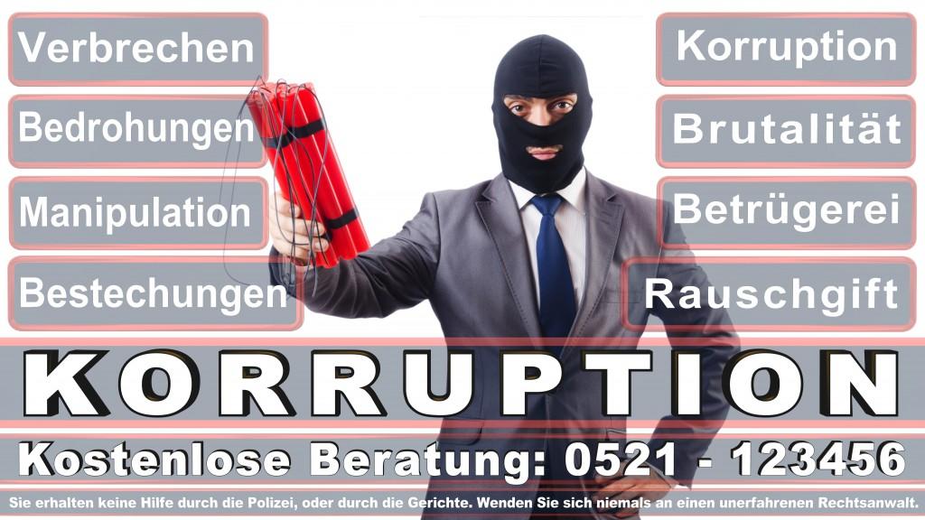Bundesverfassungsgericht-Karlsruhe (135)