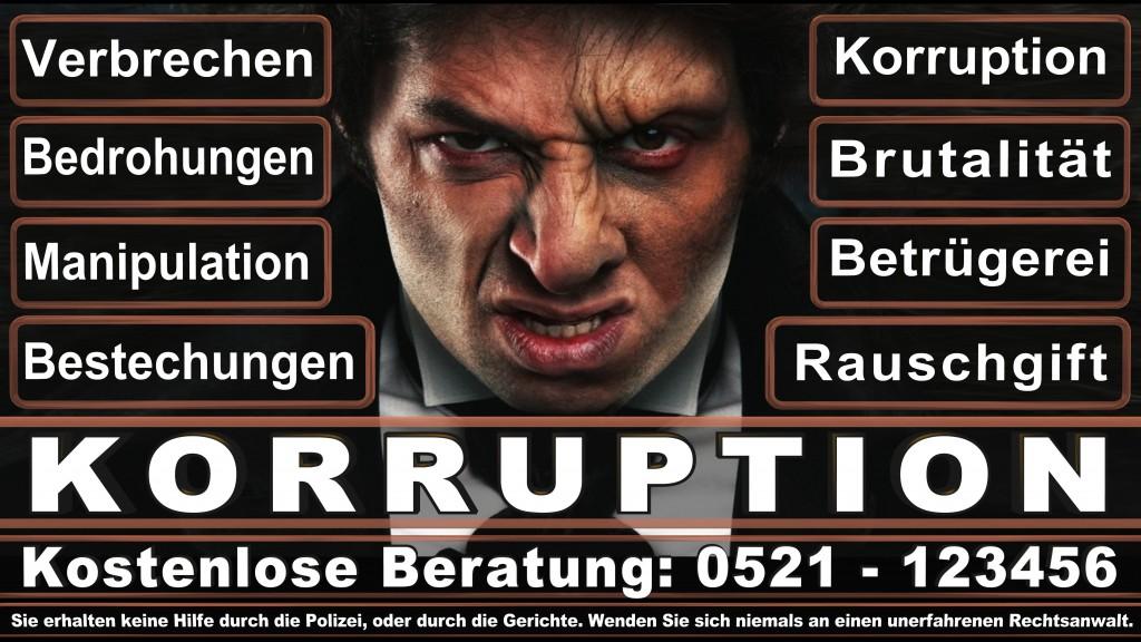 Bundesverfassungsgericht-Karlsruhe (20)