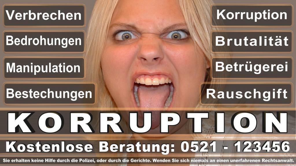 Bundesverfassungsgericht-Karlsruhe (27)