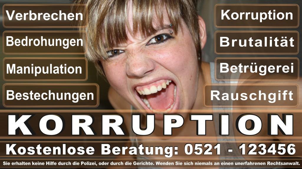 Bundesverfassungsgericht-Karlsruhe (28)