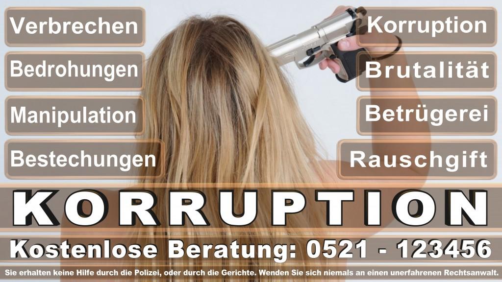 Bundesverfassungsgericht-Karlsruhe (29)