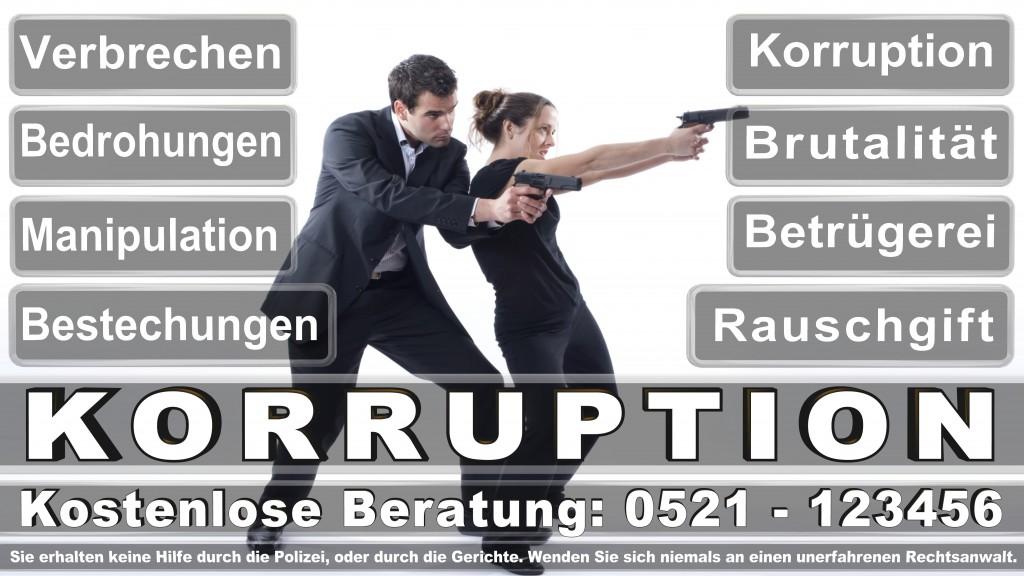 Bundesverfassungsgericht-Karlsruhe (30)