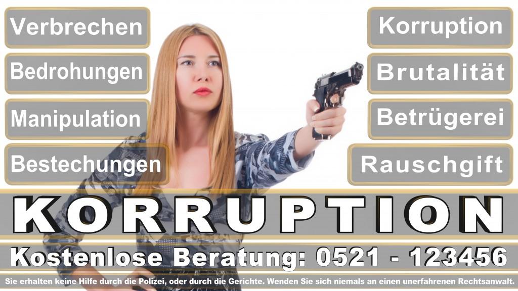 Bundesverfassungsgericht-Karlsruhe (37)