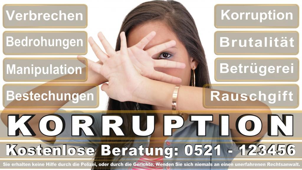 Bundesverfassungsgericht-Karlsruhe (38)