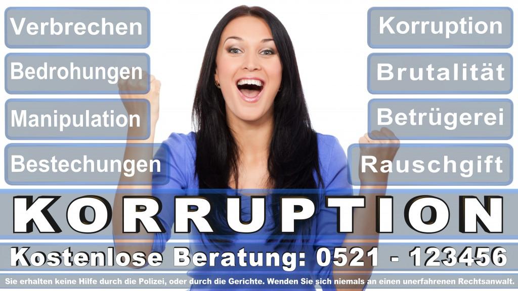 Bundesverfassungsgericht-Karlsruhe (40)