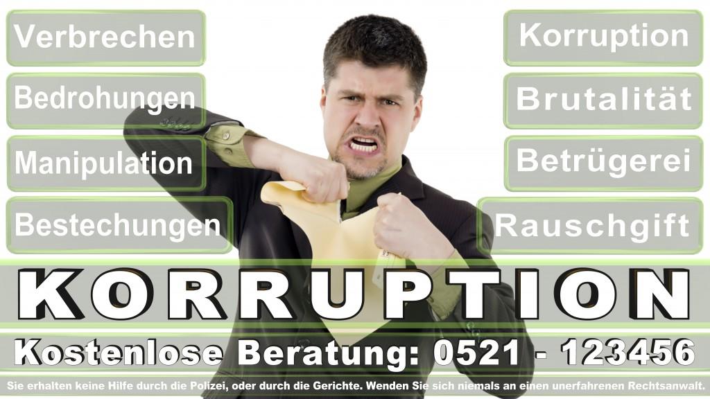 Bundesverfassungsgericht-Karlsruhe (42)