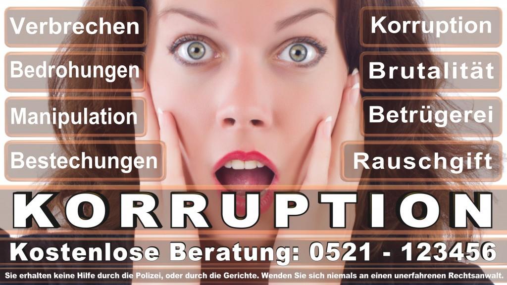 Bundesverfassungsgericht-Karlsruhe (53)