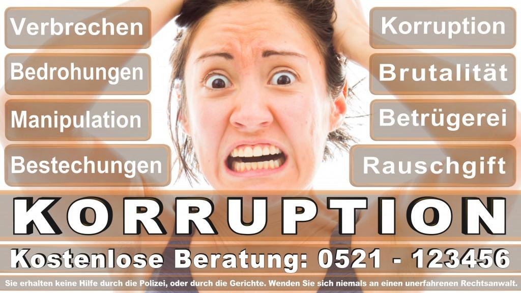 Bundesverfassungsgericht-Karlsruhe (56)