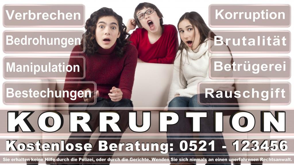 Bundesverfassungsgericht-Karlsruhe (60)