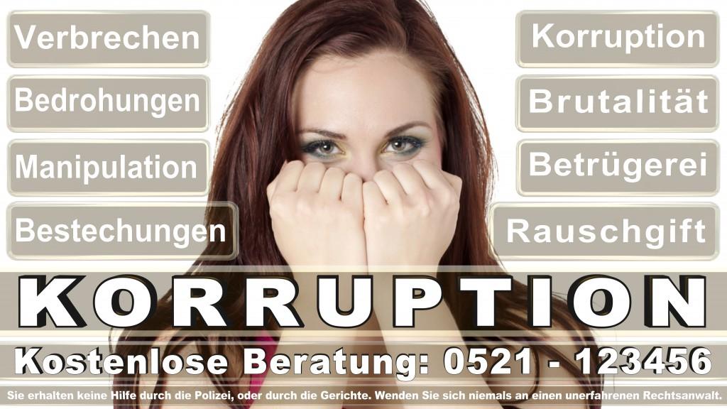 Bundesverfassungsgericht-Karlsruhe (61)