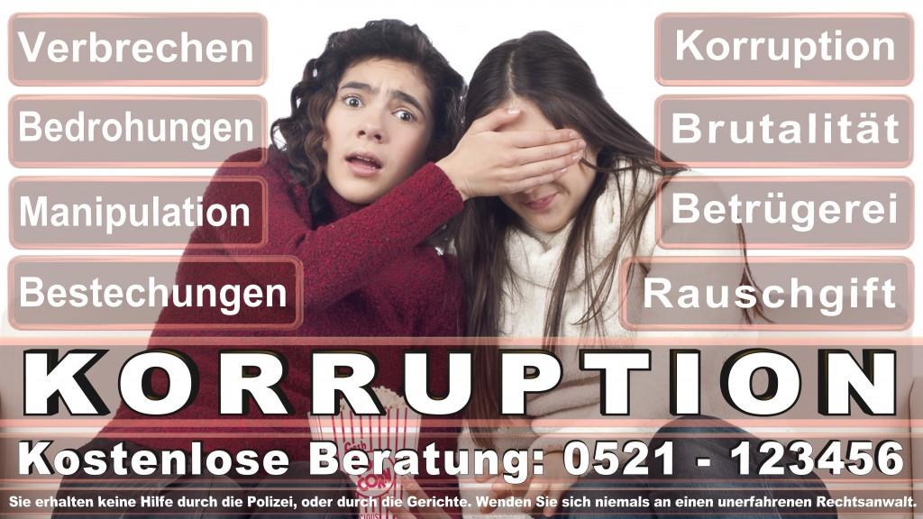 Bundesverfassungsgericht-Karlsruhe (63)