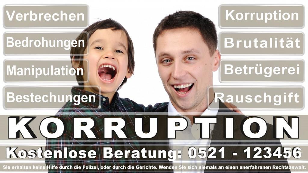 Bundesverfassungsgericht-Karlsruhe (64)