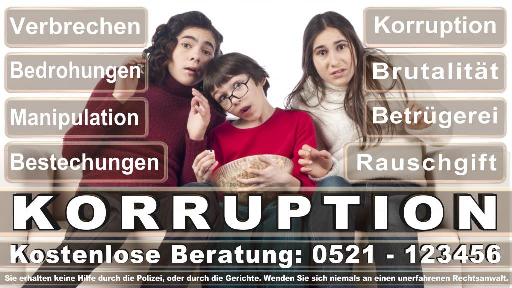 Bundesverfassungsgericht-Karlsruhe (66)