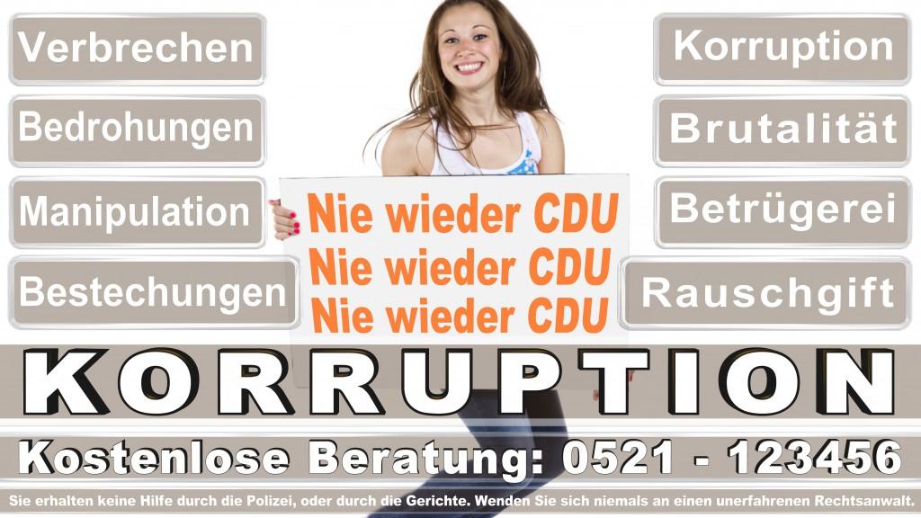 Bundesverfassungsgericht-Karlsruhe (67)