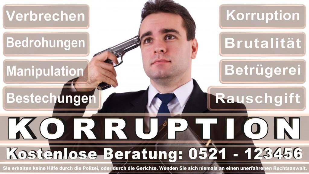 Bundesverfassungsgericht-Karlsruhe (69)