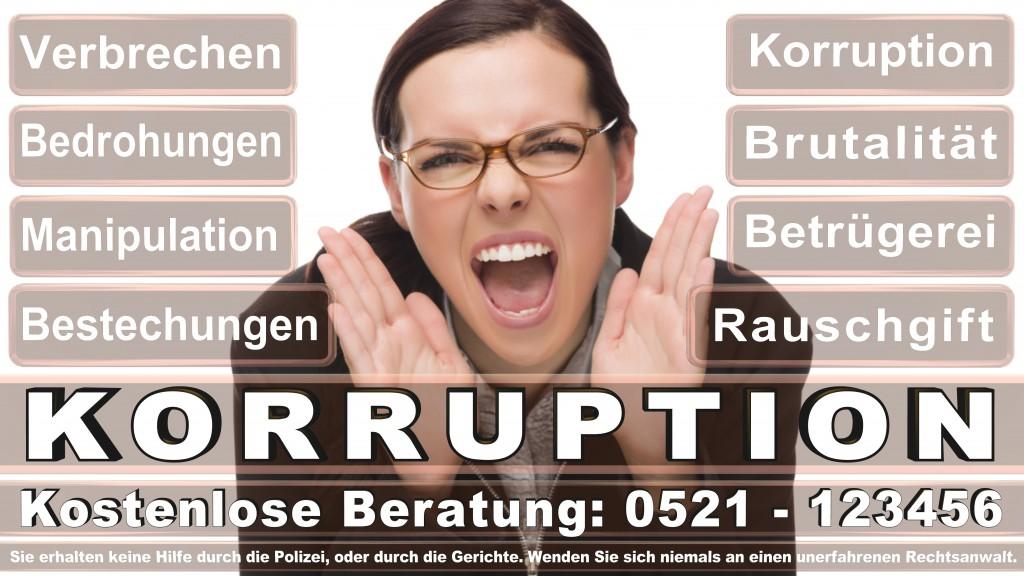 Bundesverfassungsgericht-Karlsruhe (74)