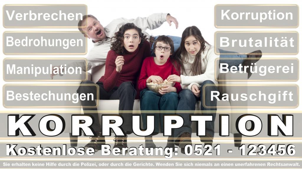 Bundesverfassungsgericht-Karlsruhe (75)