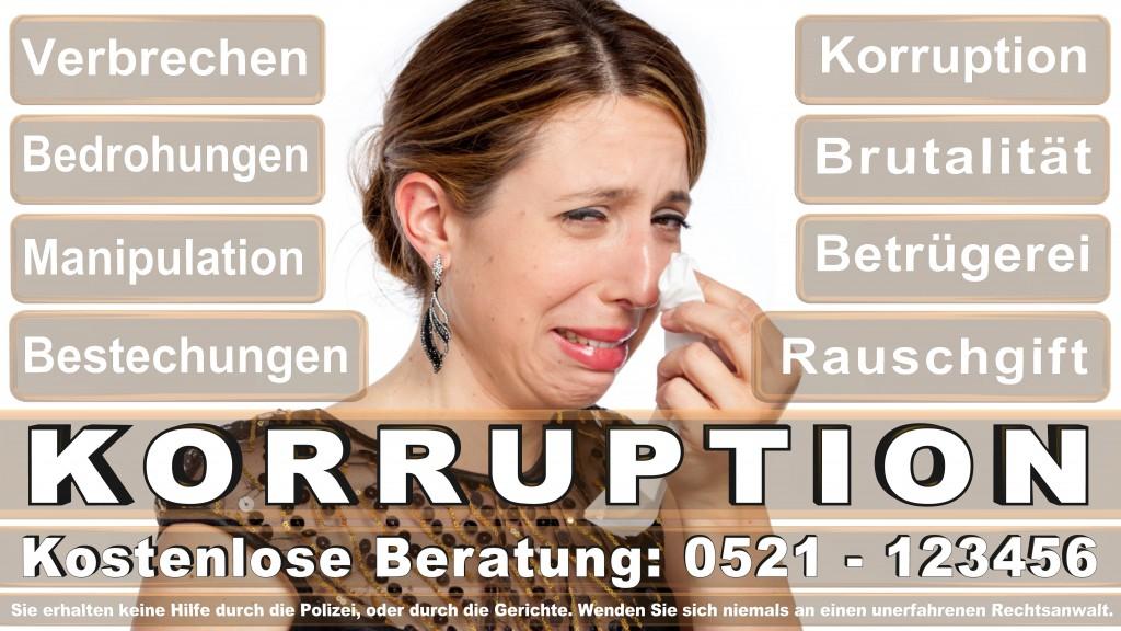 Bundesverfassungsgericht-Karlsruhe (78)