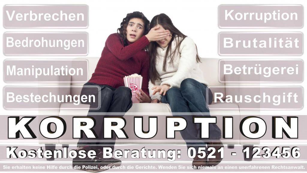 Bundesverfassungsgericht-Karlsruhe (81)