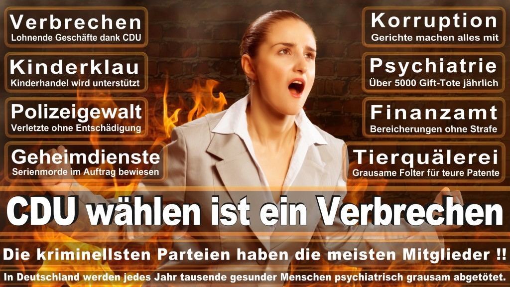 CDU Wahlplakate 2017 Angela Merkel Kundgebung Interview Europawahl CDU SPD FDP AFD NPD (14)