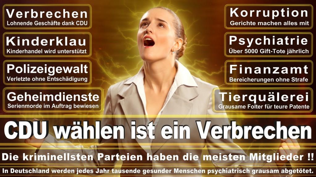 CDU Wahlplakate 2017 Angela Merkel Kundgebung Interview Europawahl CDU SPD FDP AFD NPD (15)