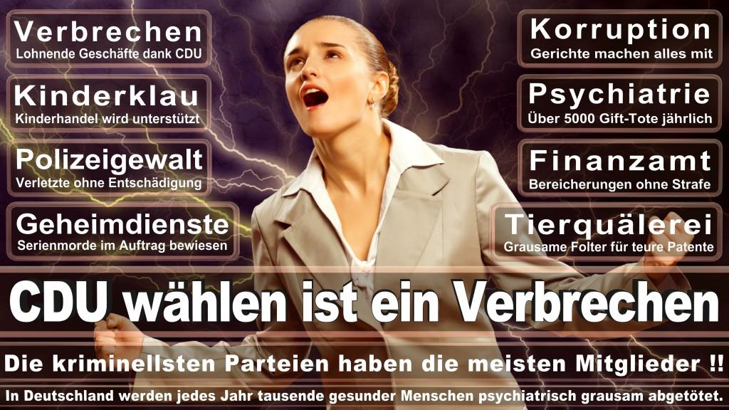 CDU Wahlplakate 2017 Angela Merkel Kundgebung Interview Europawahl CDU SPD FDP AFD NPD (20)