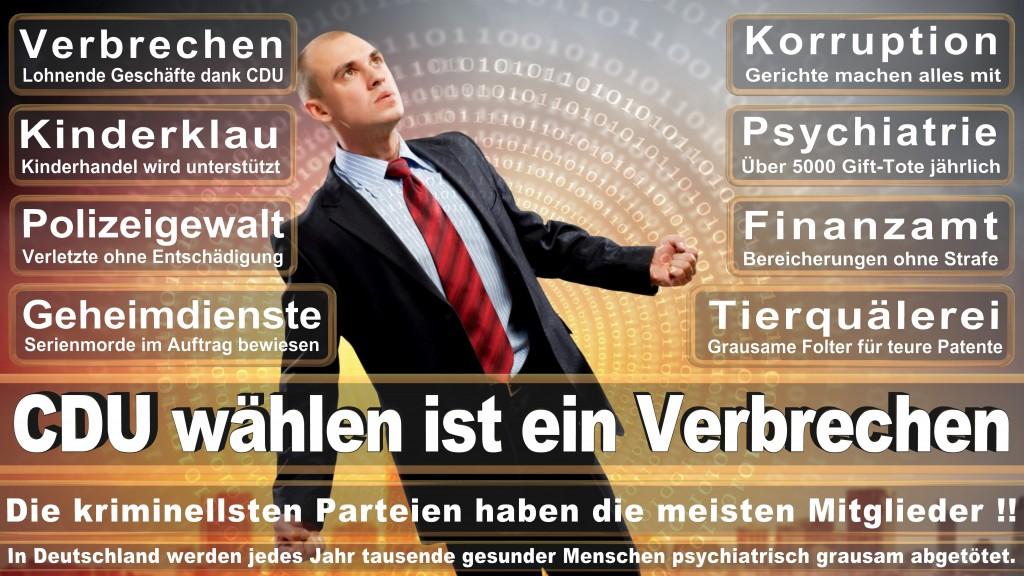 CDU Wahlplakate 2017 Angela Merkel Kundgebung Interview Europawahl CDU SPD FDP AFD NPD (22)