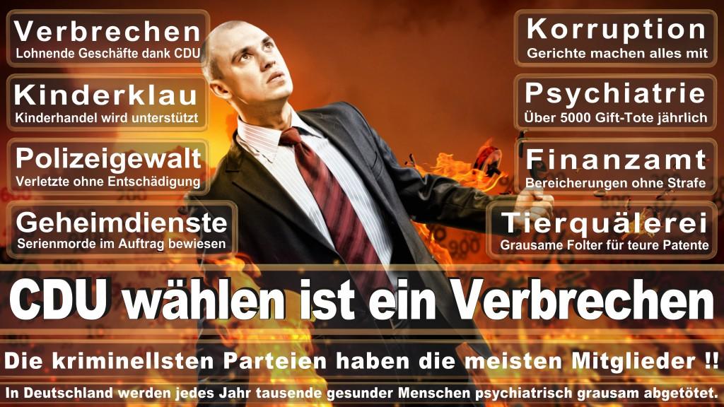 CDU Wahlplakate 2017 Angela Merkel Kundgebung Interview Europawahl CDU SPD FDP AFD NPD (23)