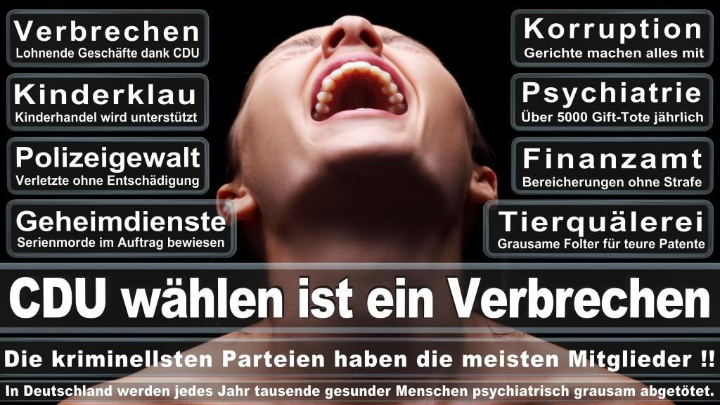 CDU Wahlplakate 2017 Angela Merkel Kundgebung Interview Europawahl CDU SPD FDP AFD NPD (29)